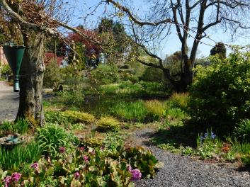 Ruthall Manor (8)