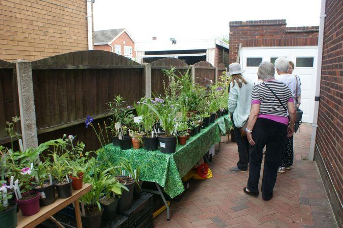 Plant Sale - June