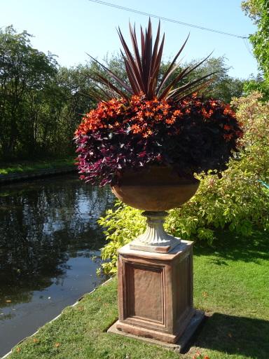 Johns Garden Ashwood - September