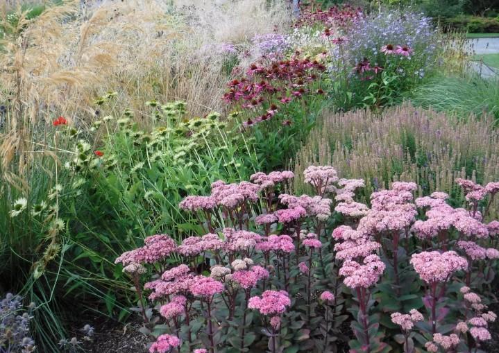 Bodnant Gardens 3